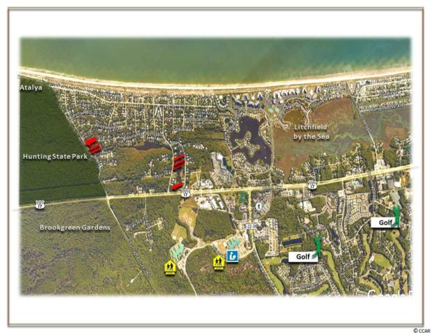 Trace Drive, Pawleys Island, SC 29585 (MLS #1724789) :: James W. Smith Real Estate Co.