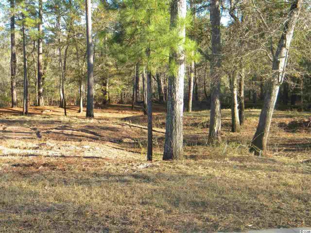 349 Cypress Flat Ct., Conway, SC 29526 (MLS #1725863) :: SC Beach Real Estate