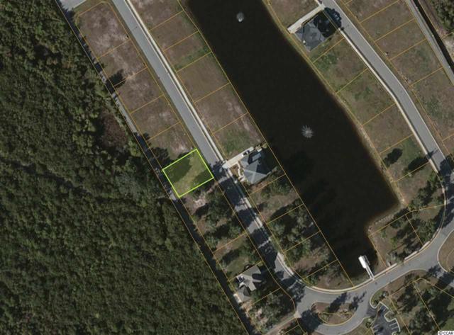 1010 Tarpon Pond Road, North Myrtle Beach, SC 29582 (MLS #1726078) :: The Litchfield Company