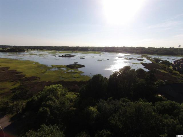 Lot 2 Heron Point, Pawleys Island, SC 29585 (MLS #1800764) :: Trading Spaces Realty