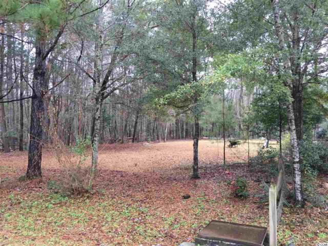 Lot 12 Red Maple Dr, Pawleys Island, SC 29585 (MLS #1800794) :: Myrtle Beach Rental Connections