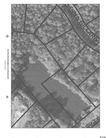 456 Joanna Gillard Lane, Georgetown, SC 29440 (MLS #1801106) :: Trading Spaces Realty