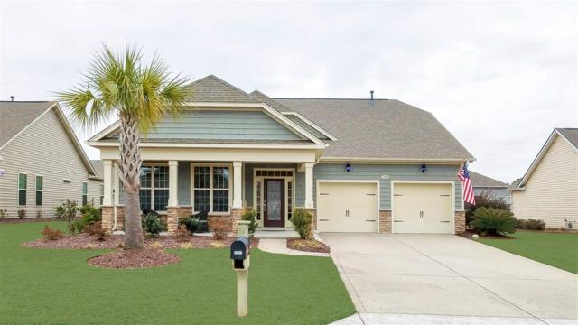 5310 Tremiti Lane, Myrtle Beach, SC 29579 (MLS #1801850) :: Myrtle Beach Rental Connections