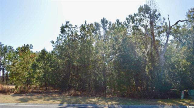 13 Colony Club Drive, Georgetown, SC 29440 (MLS #1803784) :: Myrtle Beach Rental Connections