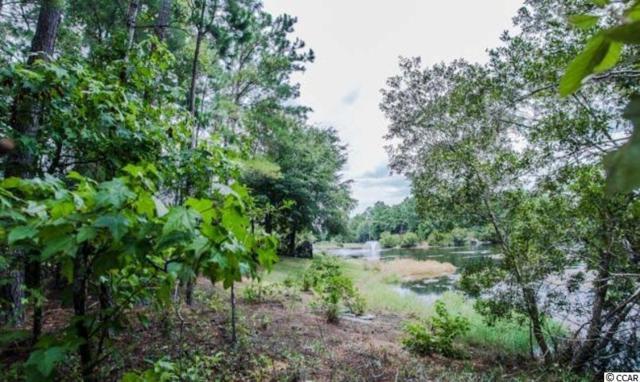 132 Rose Laurel Court, Pawleys Island, SC 29585 (MLS #1804731) :: Myrtle Beach Rental Connections