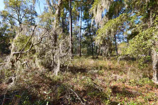 0 Ocean Hwy., Pawleys Island, SC 29585 (MLS #1805404) :: The Litchfield Company