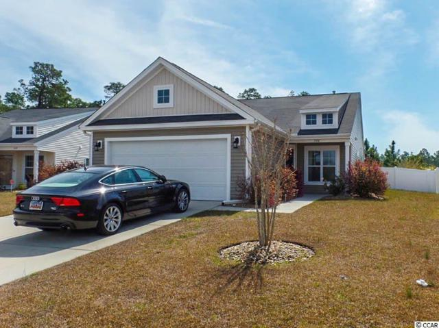 344 Stafford Drive, Myrtle Beach, SC 29579 (MLS #1805548) :: Myrtle Beach Rental Connections