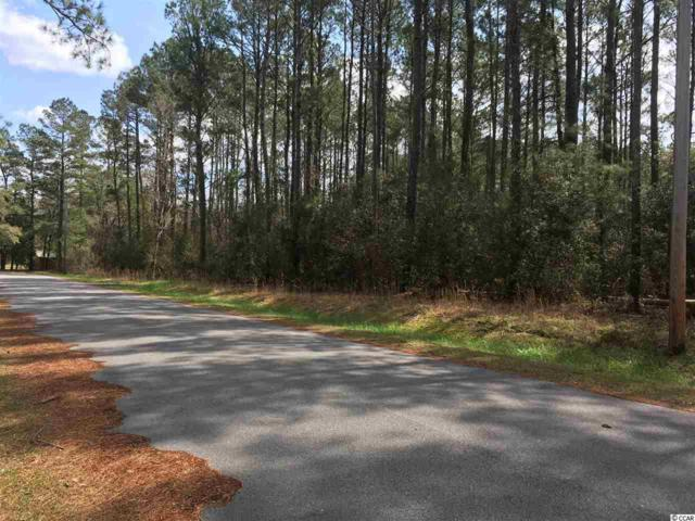 Lot 19 Alligator Ct., Conway, SC 29526 (MLS #1806125) :: Hawkeye Realty