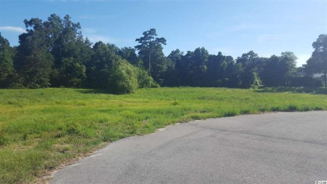 124 Triston Ct, Little River, SC 29566 (MLS #1806191) :: Resort Brokerage