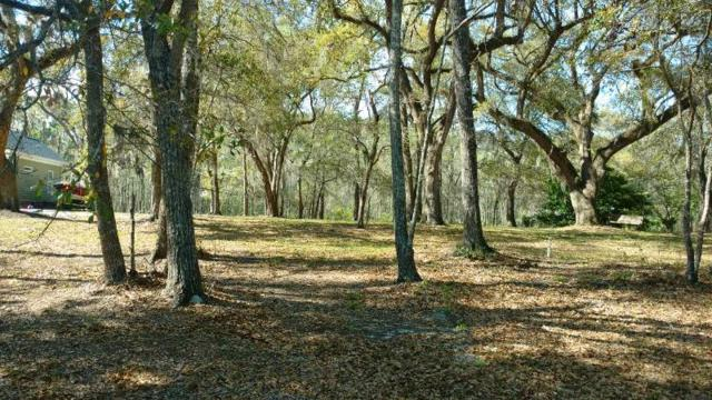 Lot 17 Robin Drive, Georgetown, SC 29440 (MLS #1807374) :: Myrtle Beach Rental Connections