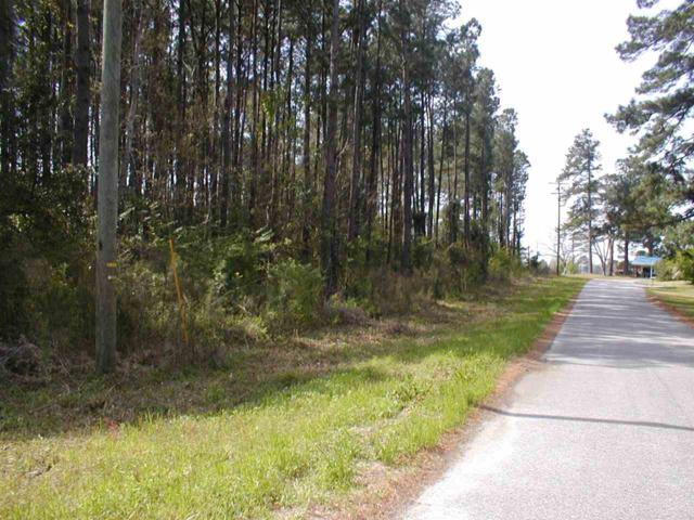 Hillcrest Street, Andrews, SC 29510 (MLS #1808483) :: Trading Spaces Realty