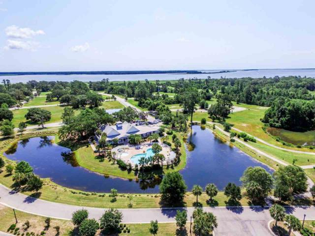 155 Commanders Island Road, Georgetown, SC 29440 (MLS #1808641) :: The Litchfield Company