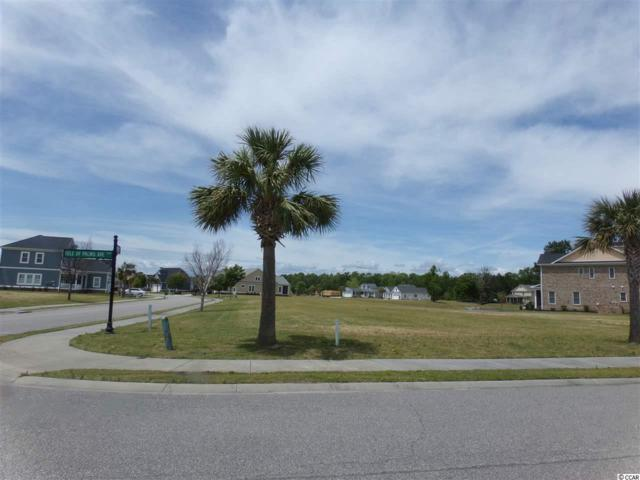 1248 E Isle Of Palms Ave, Myrtle Beach, SC 29579 (MLS #1808644) :: The Litchfield Company