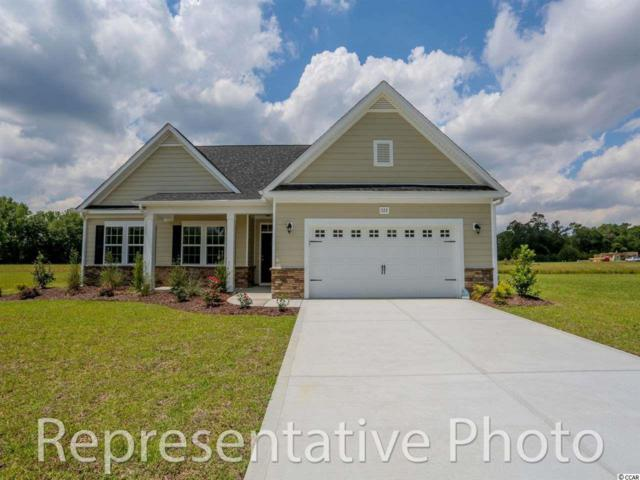 293 Board Landing Cir, Conway, SC 29526 (MLS #1808684) :: SC Beach Real Estate