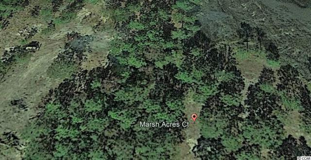 Lot 5 Not Specified, Supply, NC 28462 (MLS #1808746) :: The Hoffman Group