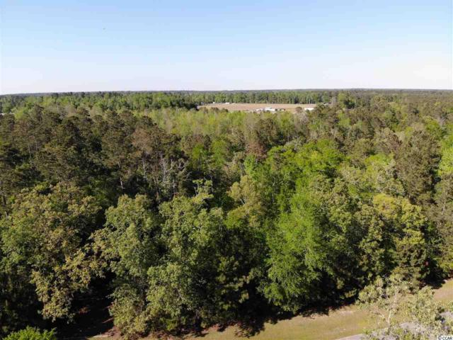 242 Cat Tail Bay Drive, Conway, SC 29527 (MLS #1808781) :: The HOMES and VALOR TEAM