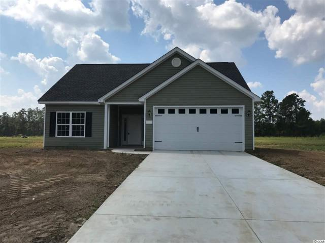 176 Springtide Drive, Conway, SC 29527 (MLS #1808816) :: The HOMES and VALOR TEAM