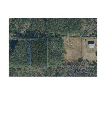 Lot 6 Wilson Trail, Murrells Inlet, SC 29576 (MLS #1808942) :: Sloan Realty Group