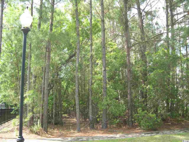 205 Warham Dr., Georgetown, SC 29440 (MLS #1809066) :: Jerry Pinkas Real Estate Experts, Inc