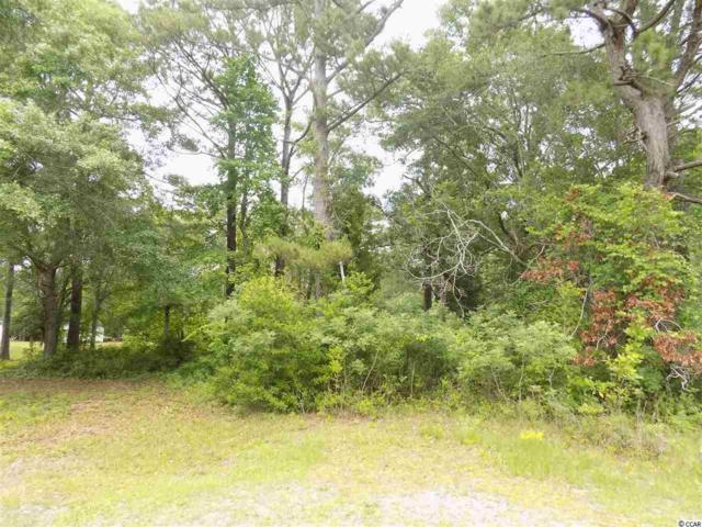 1462 Riverview Dr., Shallotte, NC 28470 (MLS #1810848) :: The Litchfield Company