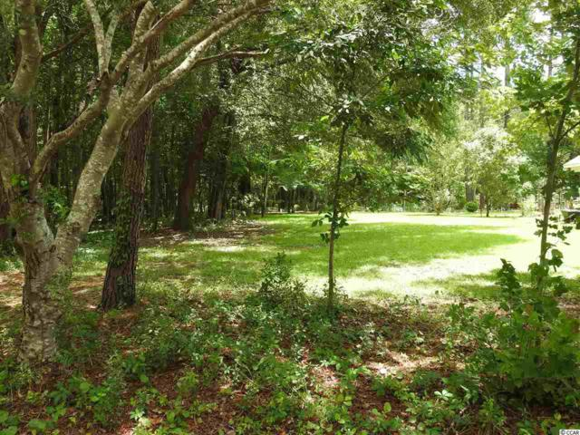 Lot 12 Red Maple Drive, Pawleys Island, SC 29585 (MLS #1811640) :: Myrtle Beach Rental Connections