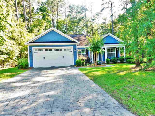 175 Otter Run Rd, Pawleys Island, SC 29585 (MLS #1811994) :: Myrtle Beach Rental Connections
