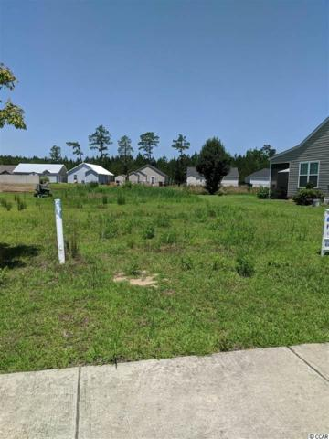 107 Murphy Way, Conway, SC 29526 (MLS #1812020) :: Myrtle Beach Rental Connections
