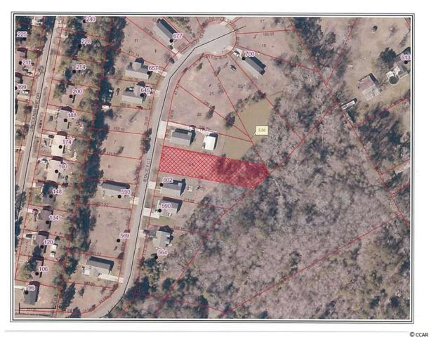 #24 Stacey Ct, Georgetown, SC 29440 (MLS #1812393) :: The Litchfield Company