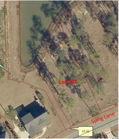 Lot 197 Sprig Ln., Murrells Inlet, SC 29576 (MLS #1813090) :: The Hoffman Group