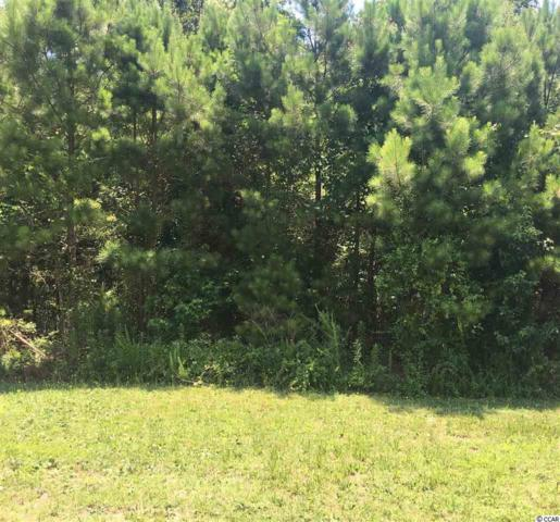 4410 Kinlaw St., Little River, SC 29566 (MLS #1813206) :: The Hoffman Group