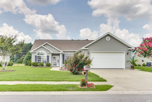 231 Hickory Springs Ct., Conway, SC 29527 (MLS #1813325) :: The Litchfield Company