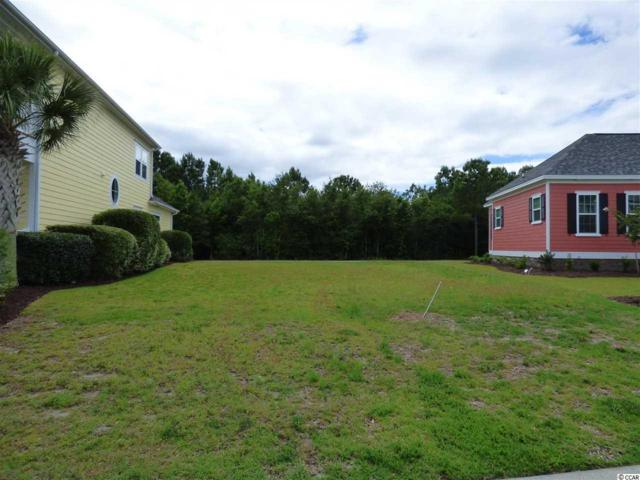 1120 Tarpon Pond Rd, North Myrtle Beach, SC 29582 (MLS #1814683) :: The Litchfield Company