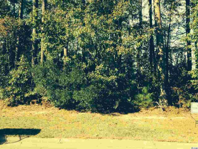 362 Fox Tail Dr., Longs, SC 29568 (MLS #1814861) :: James W. Smith Real Estate Co.