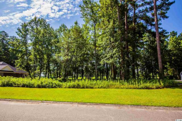 885 Bear Lake Dr., Longs, SC 29568 (MLS #1815378) :: James W. Smith Real Estate Co.