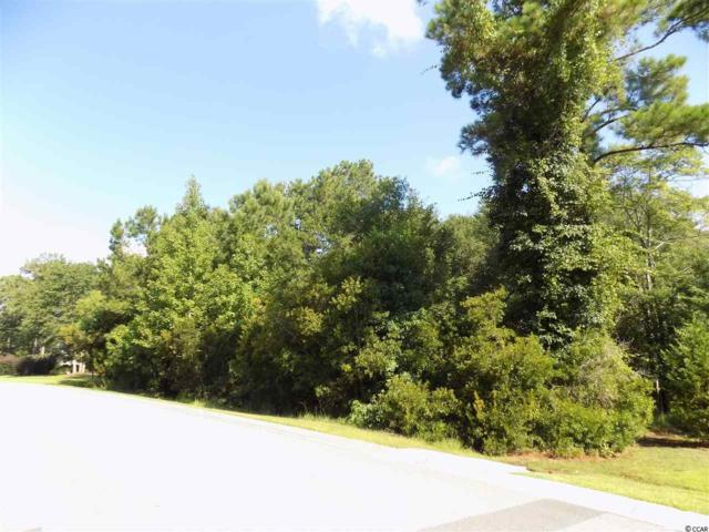 575 Riverward Dr., Bolivia, NC 28422 (MLS #1815562) :: The Hoffman Group