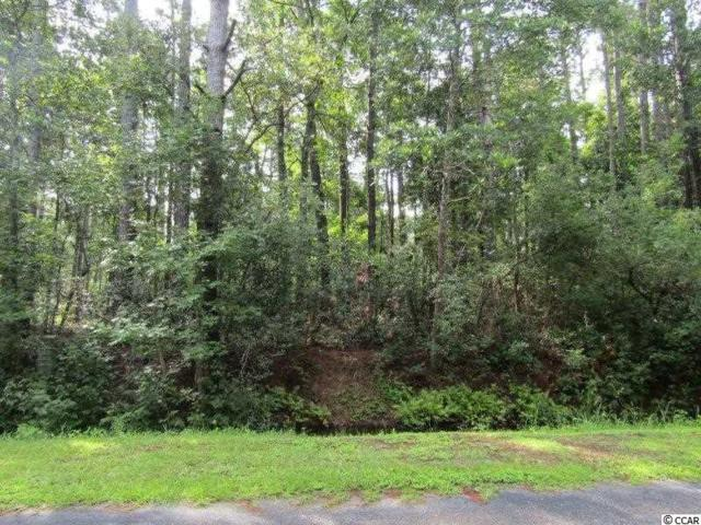 366 Thicket Dr. Nw, Calabash, NC 28467 (MLS #1815771) :: The Hoffman Group