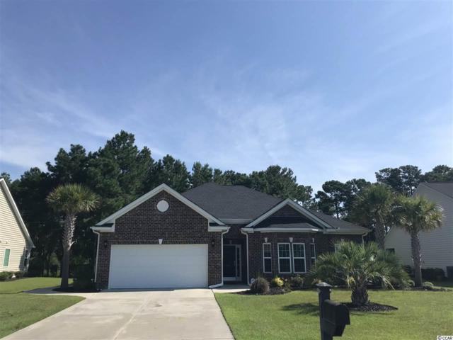 144 Shenandoah Dr, Murrells Inlet, SC 29576 (MLS #1816595) :: The Litchfield Company