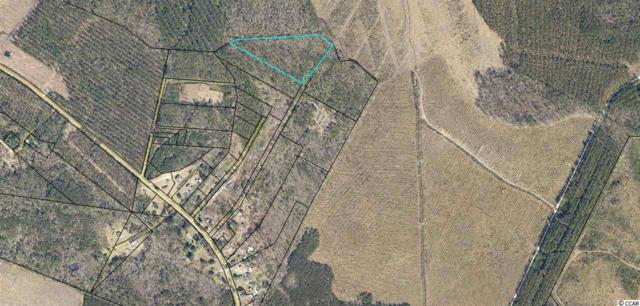 TBD 8.9 Acres Off Of Powell Rd., Georgetown, SC 29440 (MLS #1817261) :: The Litchfield Company