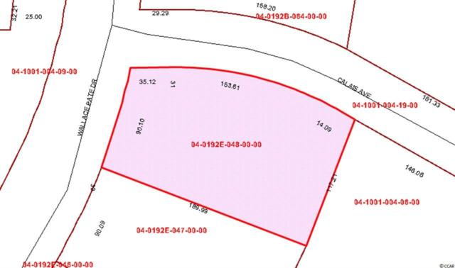 Lot 31 Wallace Pate Drive, Georgetown, SC 29440 (MLS #1817561) :: Myrtle Beach Rental Connections