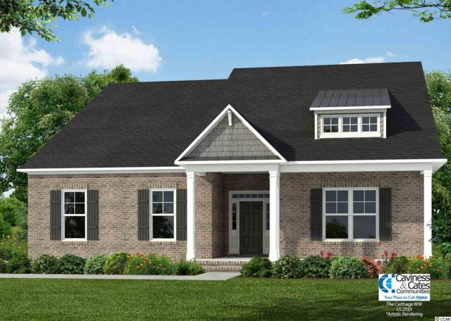 2107 Wood Stork Drive, Conway, SC 29526 (MLS #1817579) :: The Litchfield Company