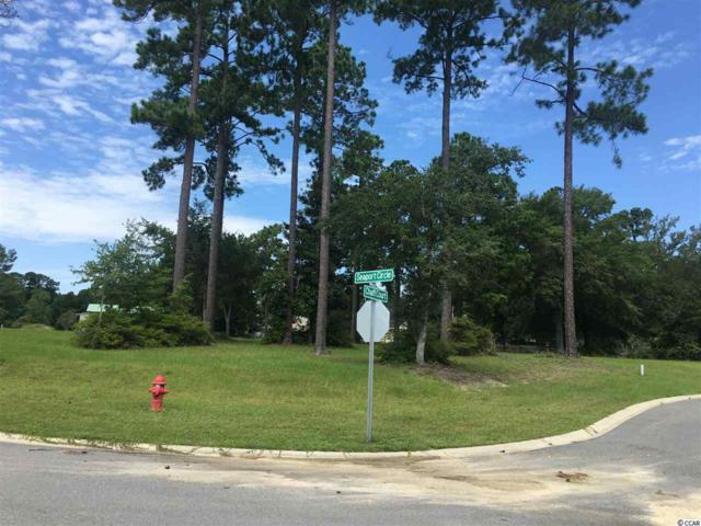 S Seaport Circle, Georgetown, SC 29440 (MLS #1817937) :: The Hoffman Group