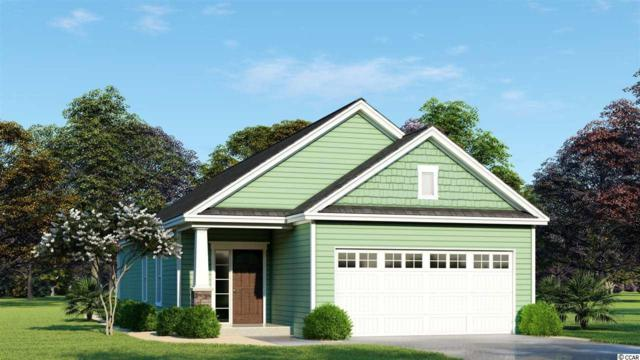 TBD Riverport Dr., Conway, SC 29526 (MLS #1817943) :: Right Find Homes