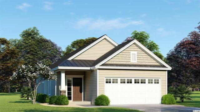 TBD Riverport Dr., Conway, SC 29526 (MLS #1817946) :: Right Find Homes