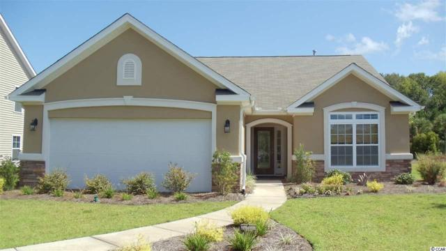 404 Wood Forest Court, Little River, SC 29566 (MLS #1818008) :: The Litchfield Company