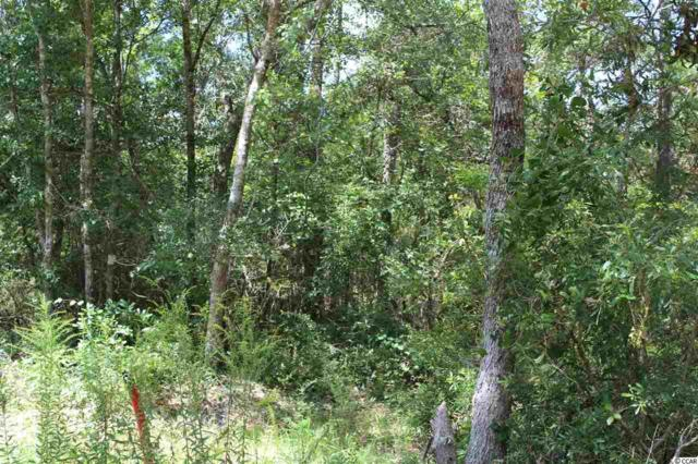 TBD Old Tram Rd., Little River, SC 29566 (MLS #1818249) :: The Hoffman Group
