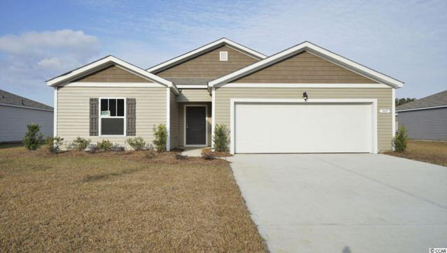 162 Parkglen Drive, Pawleys Island, SC 29585 (MLS #1819011) :: The Litchfield Company