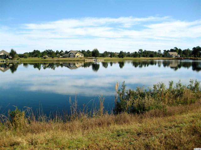 Lot 328 Murrelet Court, Conway, SC 29526 (MLS #1819040) :: The Litchfield Company