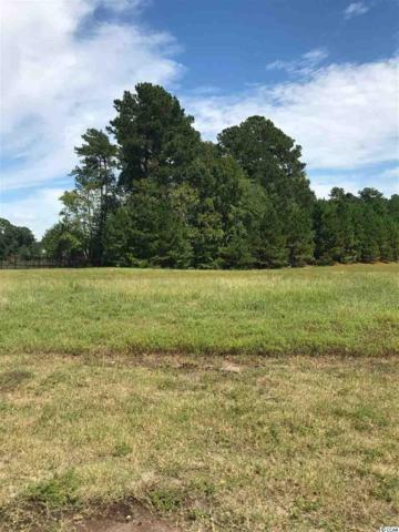 2215 Woodstork Drive, Conway, SC 29526 (MLS #1819229) :: The Litchfield Company