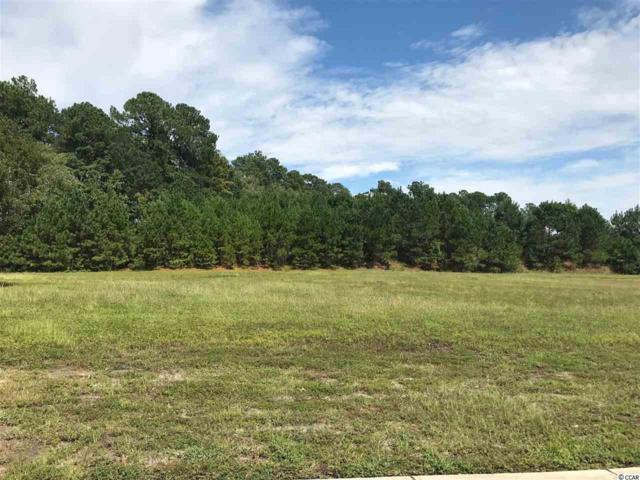 2221 Woodstork Drive, Conway, SC 29526 (MLS #1819230) :: The Litchfield Company