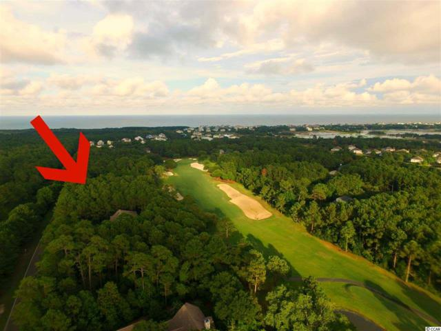 Lot 317 Wallace Pate Drive, Georgetown, SC 29440 (MLS #1819264) :: Myrtle Beach Rental Connections